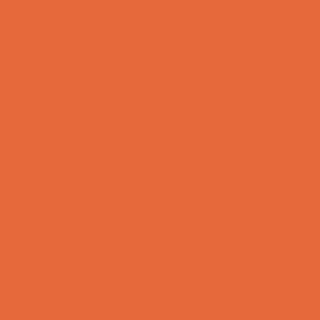 53850_ orange fluo