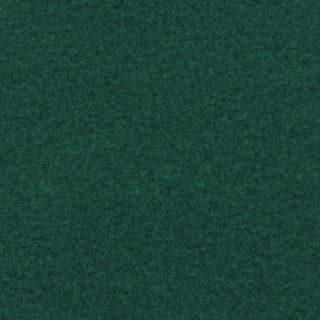 Expoluxe-0831-Pine Green-Pantone3305C