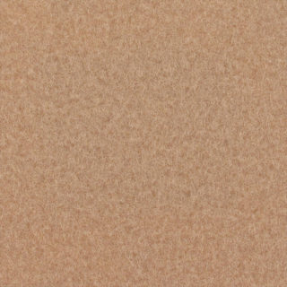 Expoluxe-9516-Beige-Pantone4675C